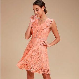 NWT BB Dakota rease lace ruffled dress